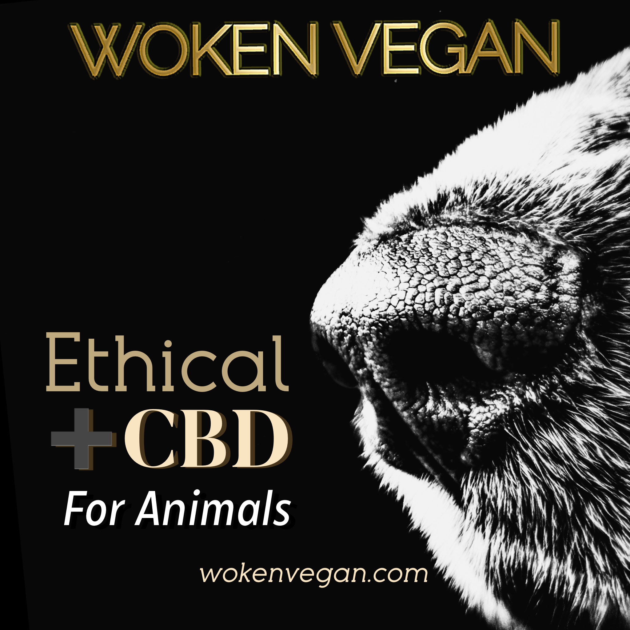 ethical CBD Woken Vegan